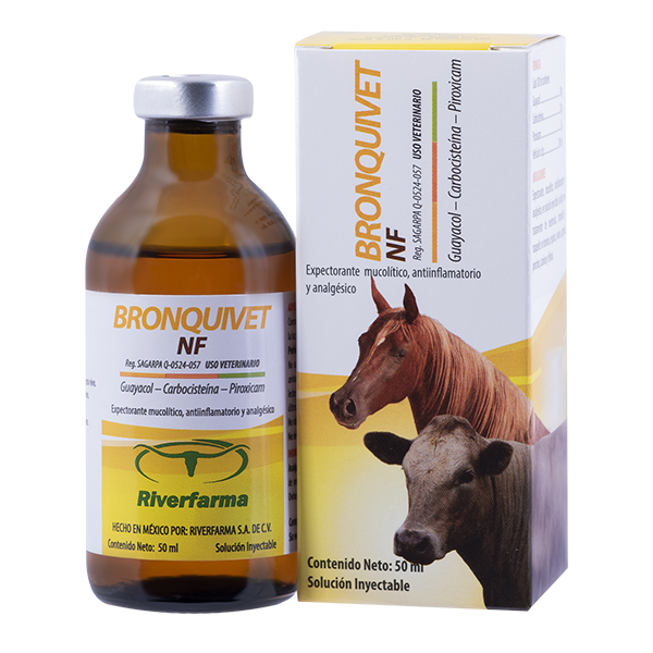 Bronquivet