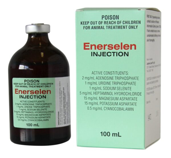 ENERSELEN INJECTION 100ML
