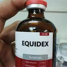 EQUIDEX