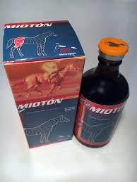MIOTÓN – 100 ML INJECTION