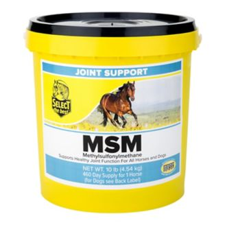 MSM Joint Support for Horses