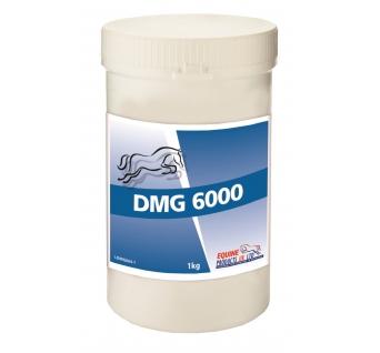 DMG 6000