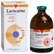 LUROCAINE