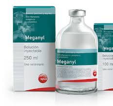 Meganyl
