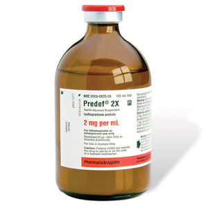 Predef 2X