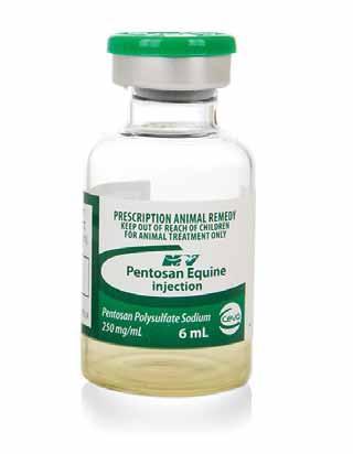 Pentosan with HA