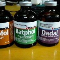 Batphol