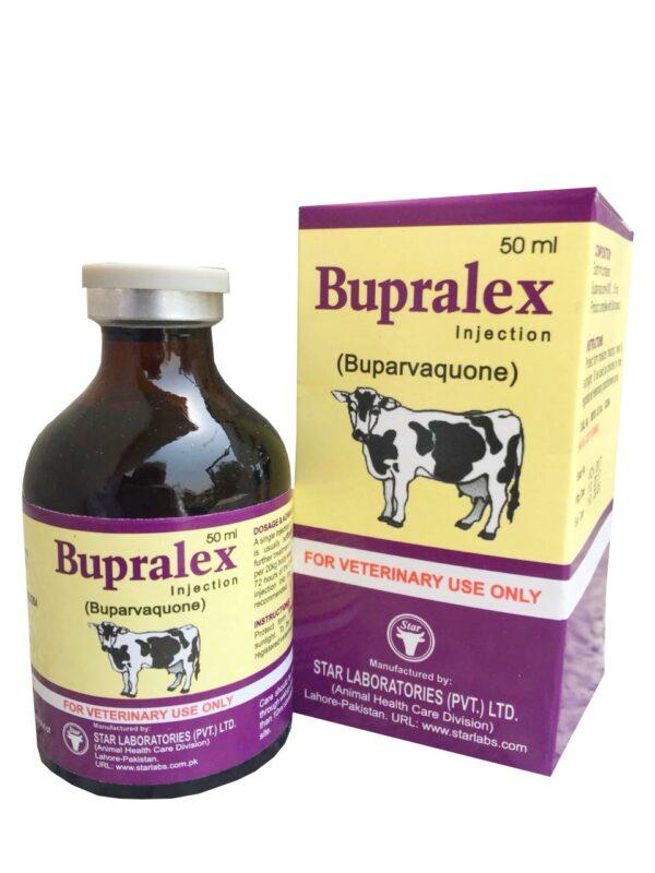 Bupralex Injection