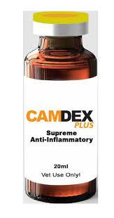 Camdex Plus